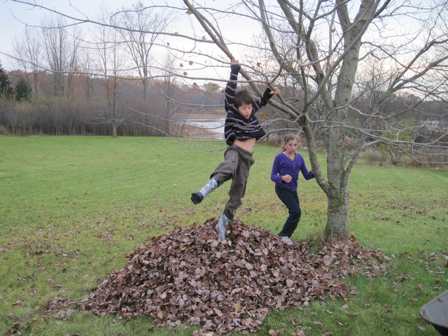 Raking and jumping in leaves