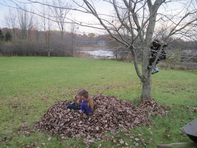 Raking, jumping in leaves