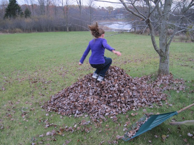 Raking, then jumping in leaves