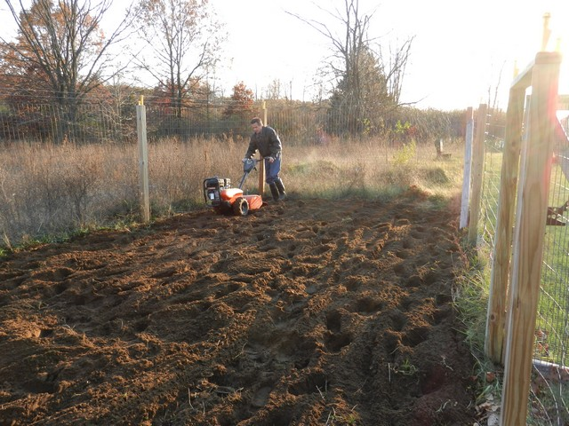 Tilling vegetable garden