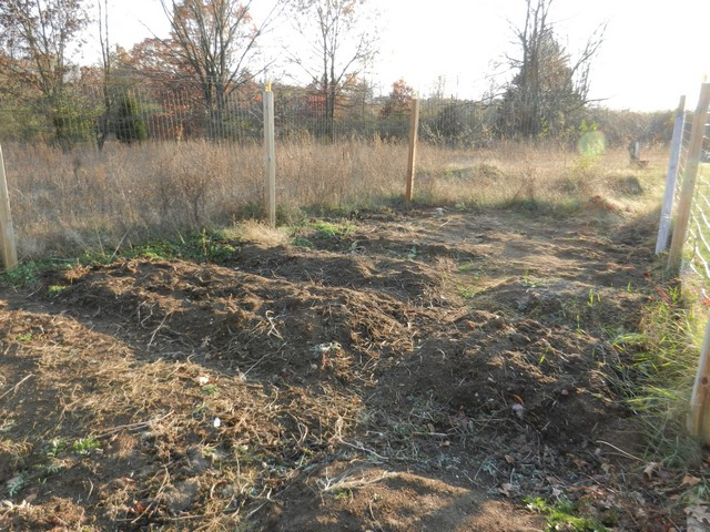Vegetable Garden in fall, after harvest