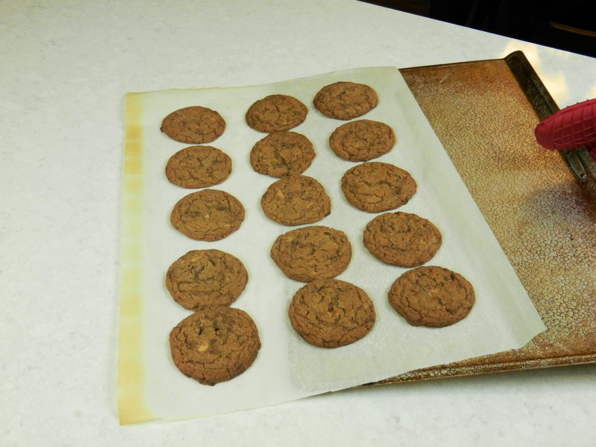 Chewy Malted Milk Cookies, perfectly round after conveniently shaping cookie dough, using scoop.