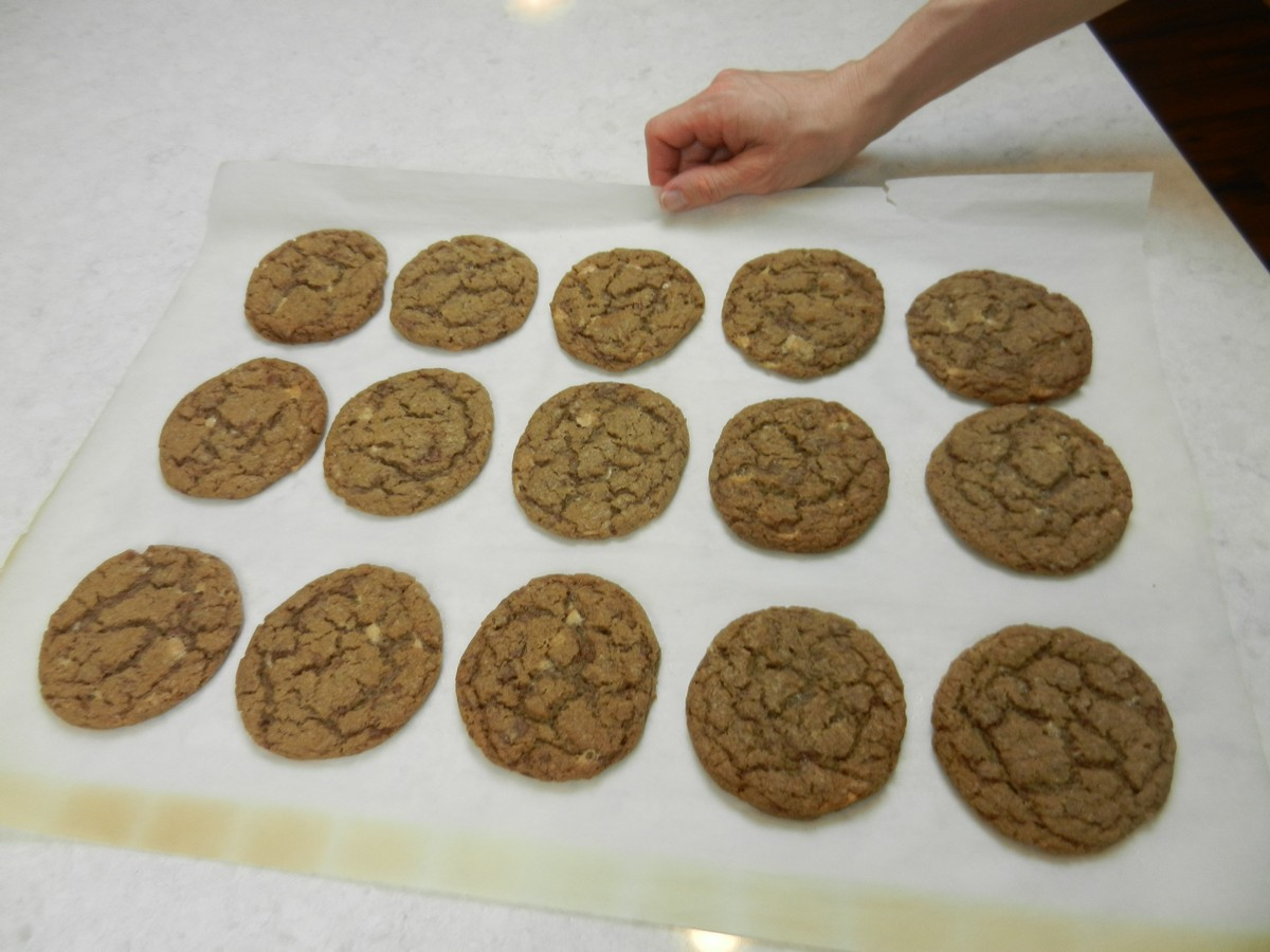 Chewy Malted Milk Cookies, the best ever, cooling on the counter.