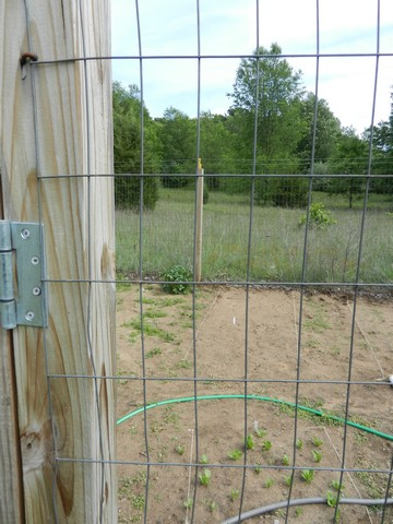 Fence for Home Gardens, Using Fencing Wire & Chicken Netting | The ...