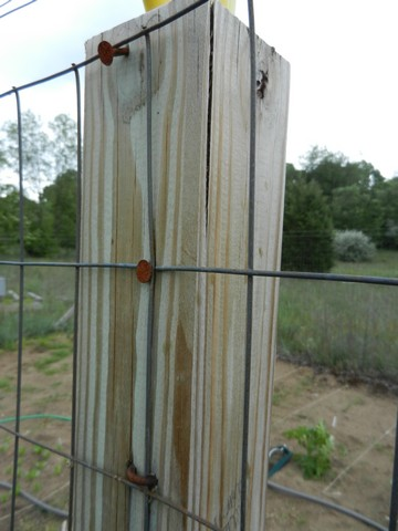 Fence For Home Gardens Using Fencing Wire Amp Chicken